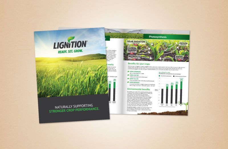 Lignition Marketing Materials